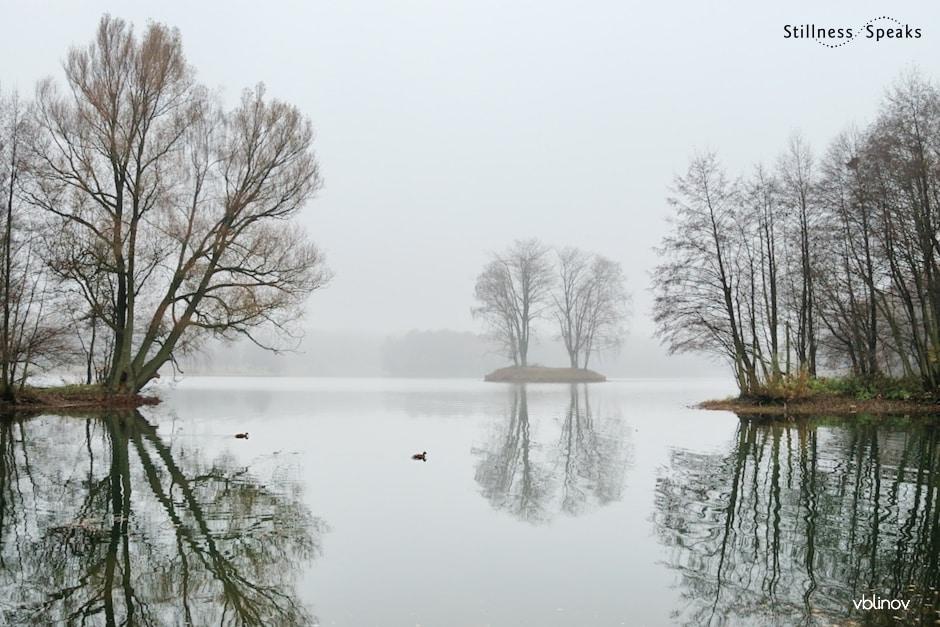 lake foggy rumi who am i