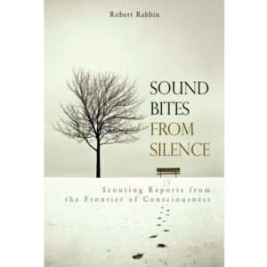 Sound Bites From Silence Robert Rabbin