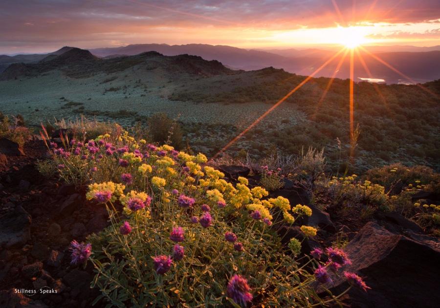 John Muir Sierra Nevada Sunrise