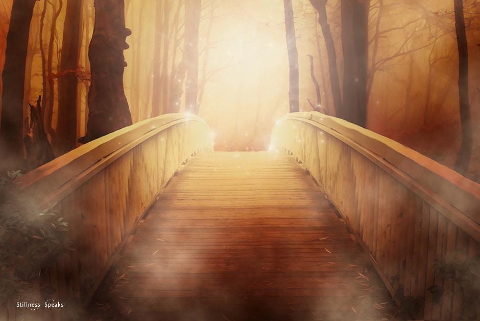 Bridge, path