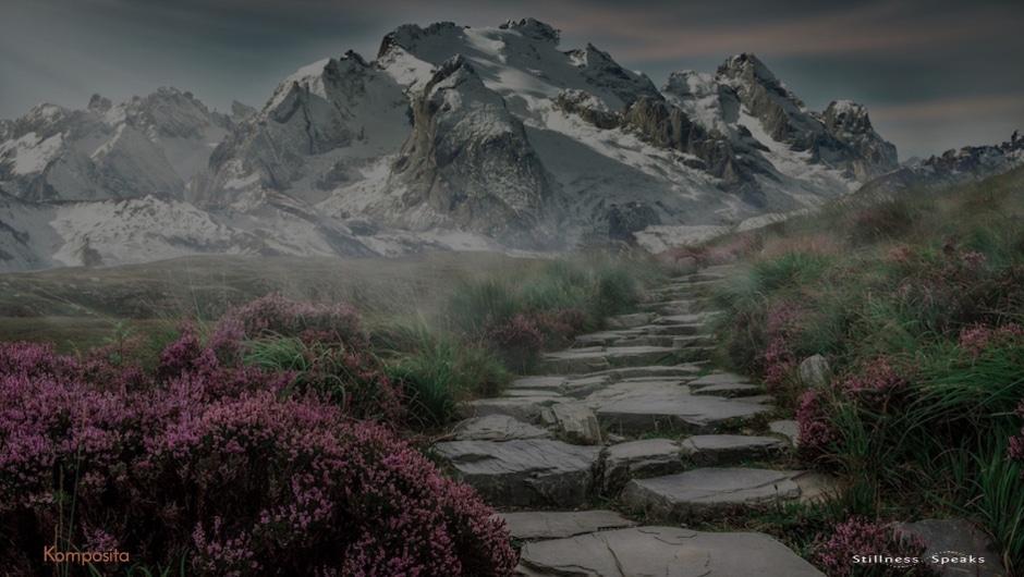 path, seeking, finding
