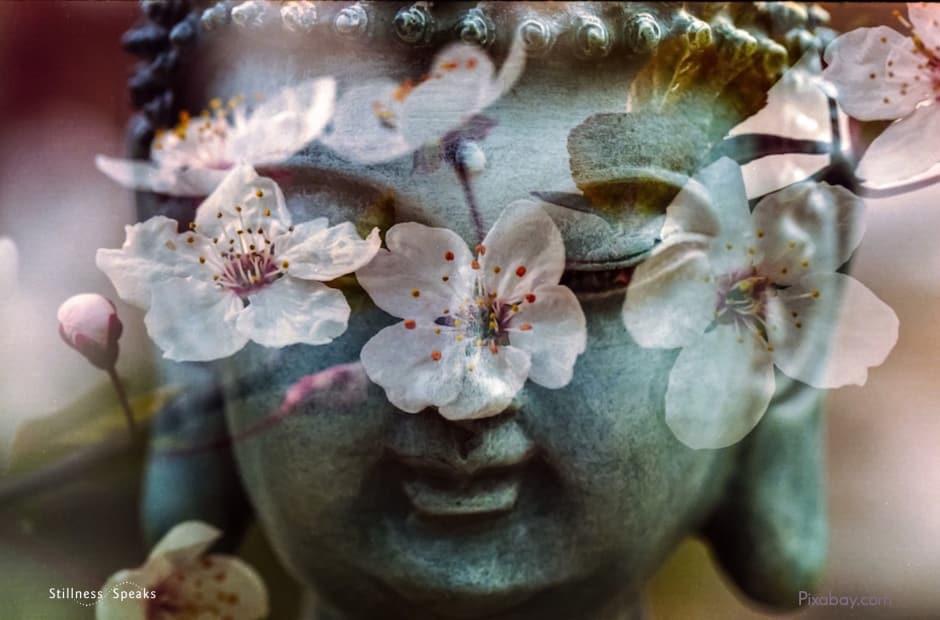 meditation, buddha, feast