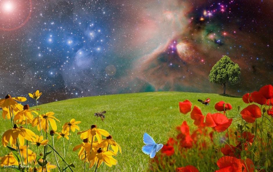 awareness, consciousness