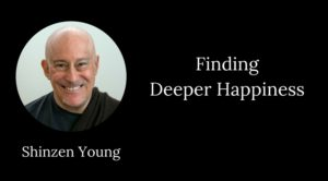 shinzen young mindfulness deeper happiness