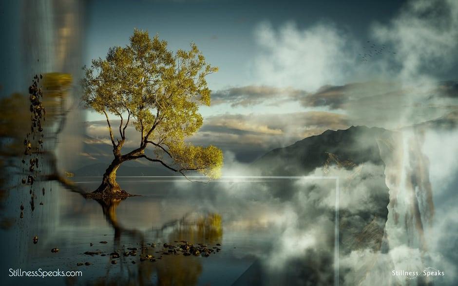 Stillness, Silence