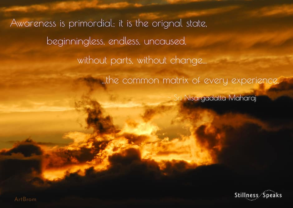 primordial awareness