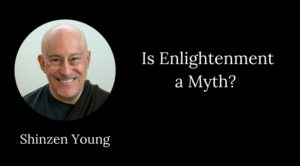 shinzen young enlightenment