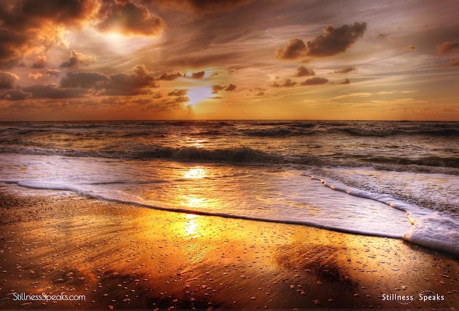 ocean consciousness