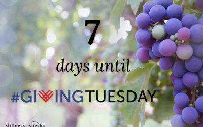Stillness Speaks and Giving Tuesday: 7 Days to go