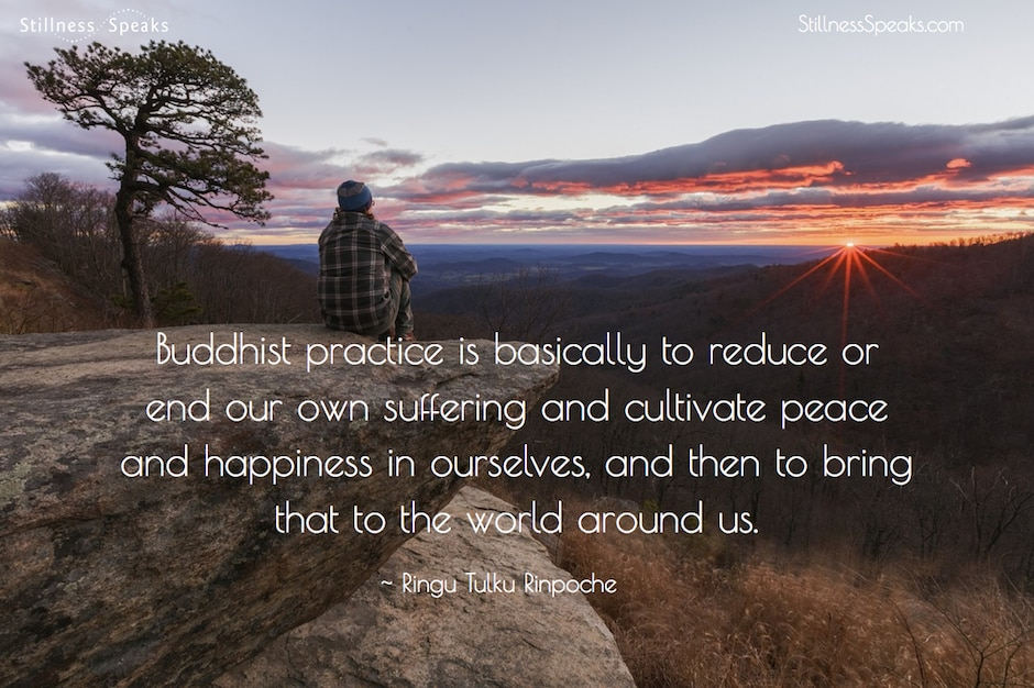 purpose, buddhist, practice