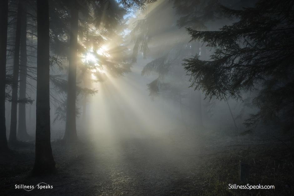cosmic journey, enlightenment