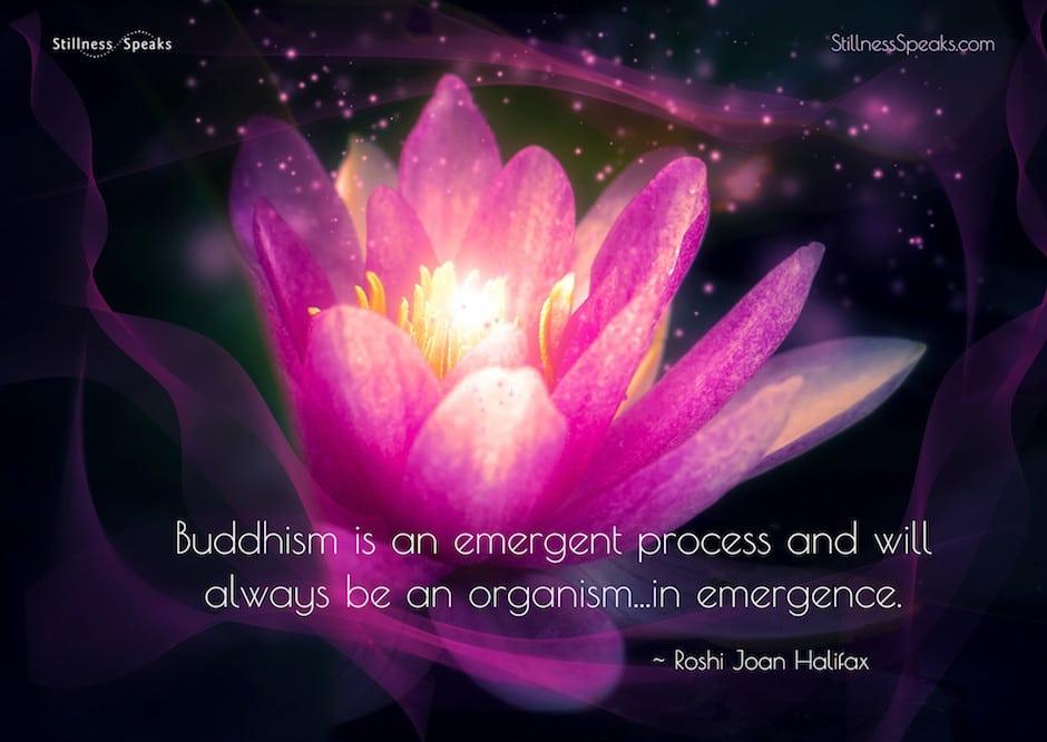 emergence, buddhism