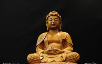 Exploring Buddhism and Cultural Adaptation