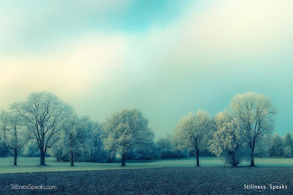 clear, pure, seasons