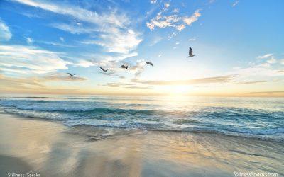 Ellerby: Understanding Spirituality … & Life