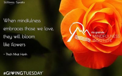FEATURED POST: Giving Tuesday & Fostering Mindfulness