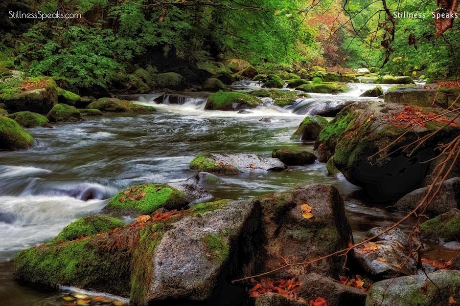 rumi river animates landscape