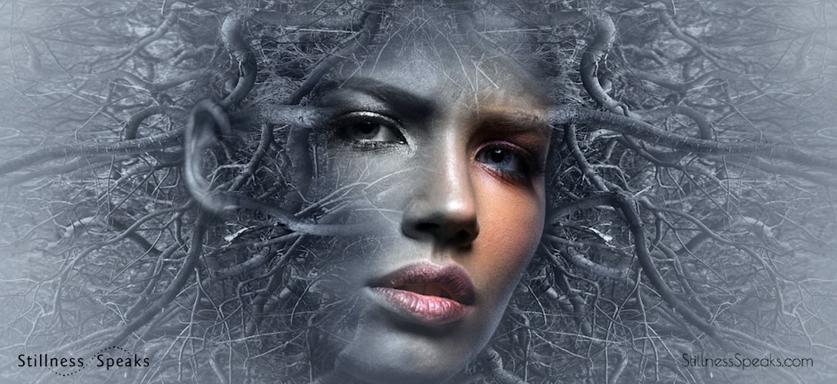 face branches amidon beholding mystery