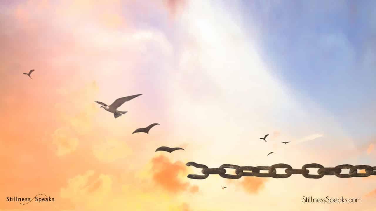birds flying break chain forgiveness russell