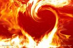 fire heart inflamed with beloved sufi way