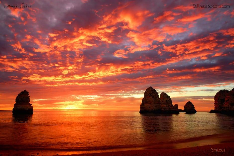 transparence pure presence amidon stunning sunrise