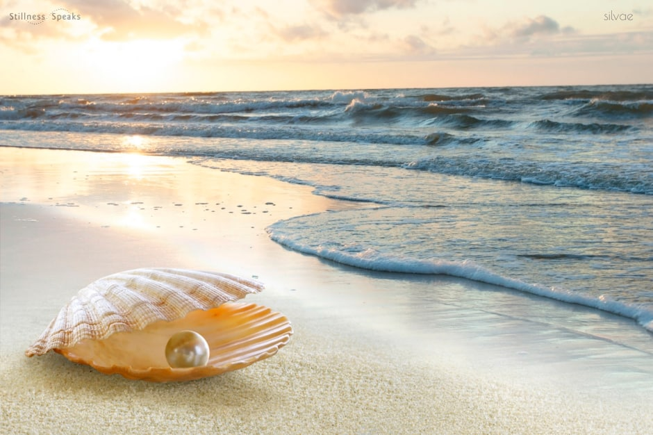 self oyster pearl ocean rumi