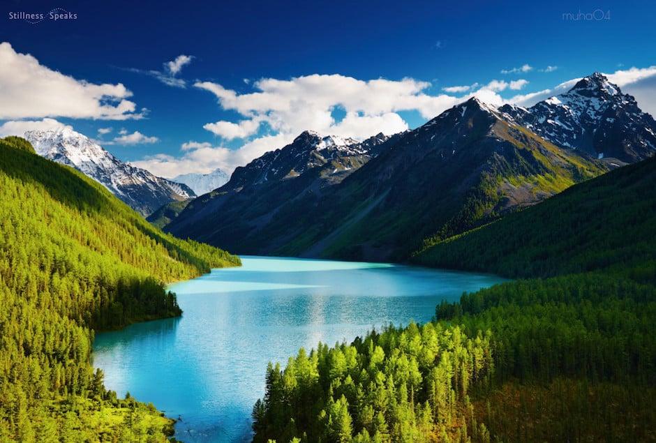 peaceful water trees mountain lake