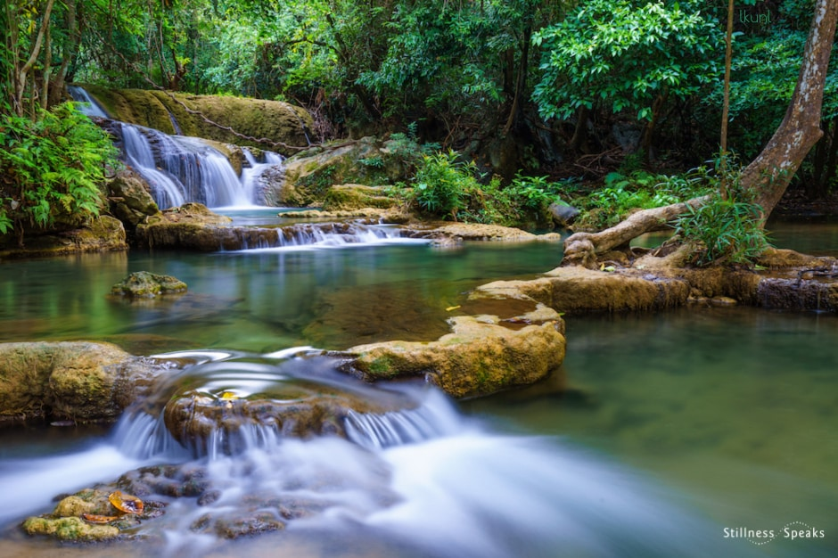 forest waterfall realize water springs upanishad