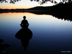 meditator realize self meditation harvey