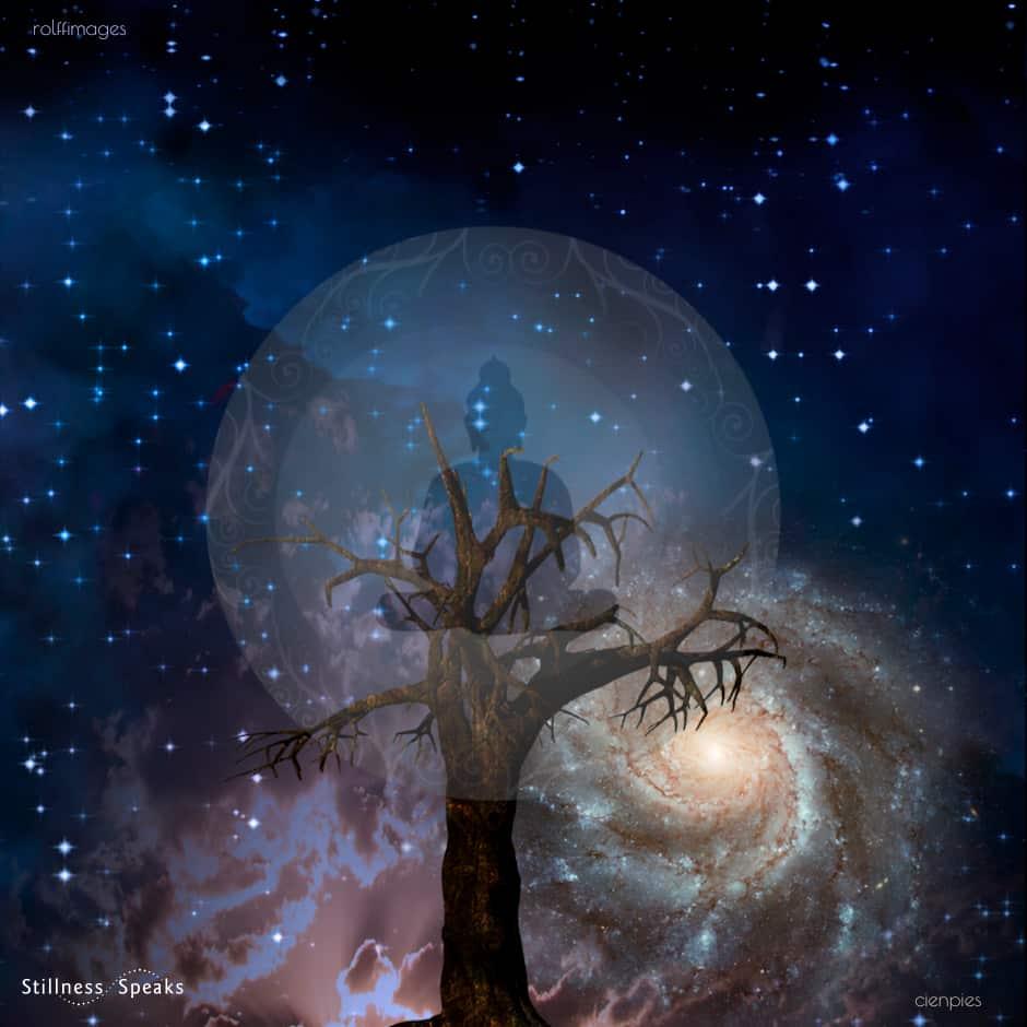 cosmic awakening lucille