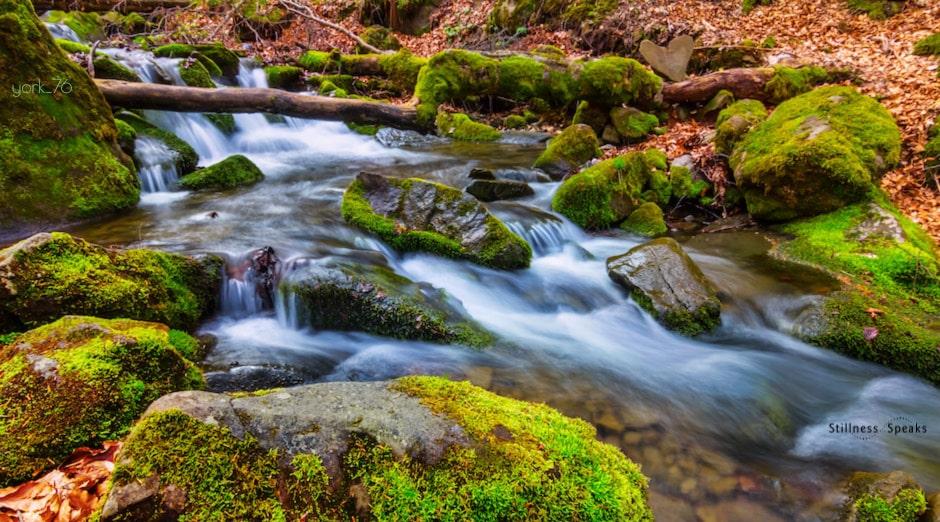 mountain brook fleeting happiness hurley