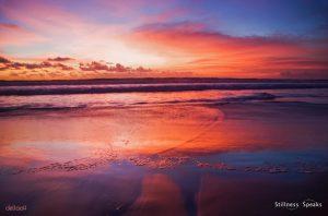 tropical sunset true immortality tollifson