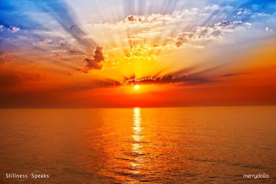 sunrise timeless eternity meijer