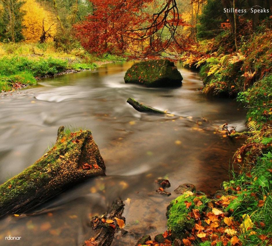 autumn landscape initiation change meijer