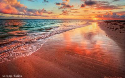 After Death: Reincarnation & More – Joan Tollifson
