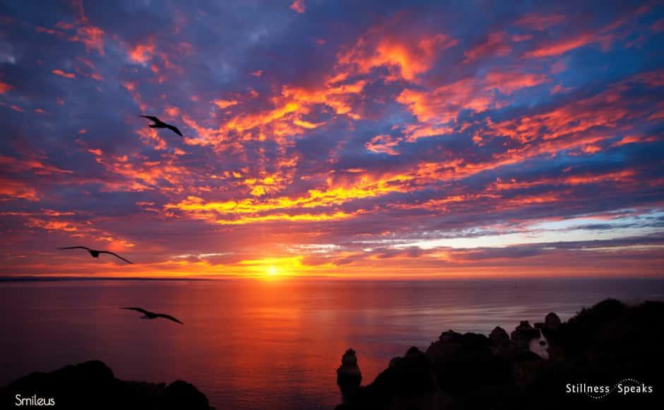 dawn my beloved j krishnamurti