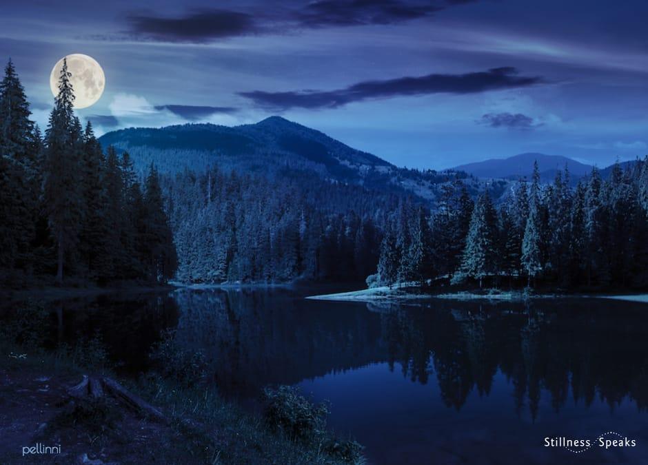 dark nights tranquility j krishnamurti