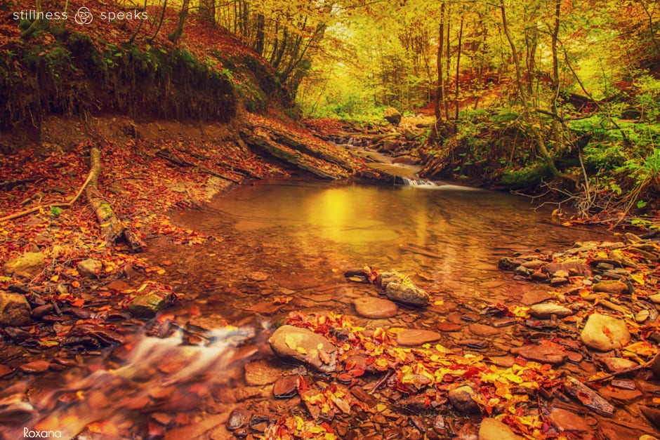 autumn river how it is right now tollifson