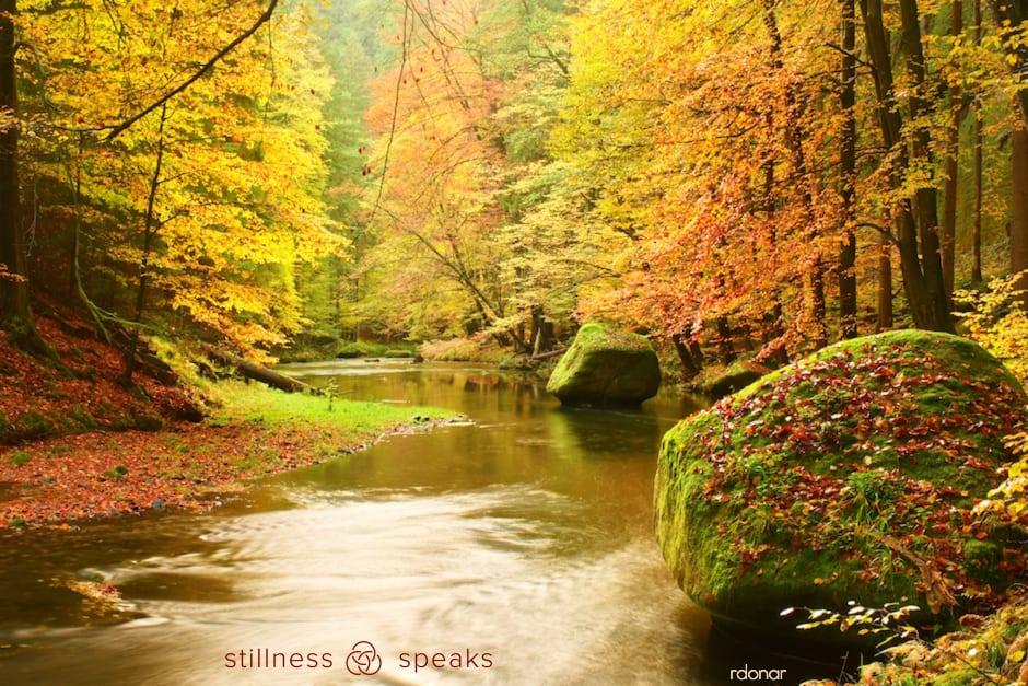 river autumn freedom just this amoda maa