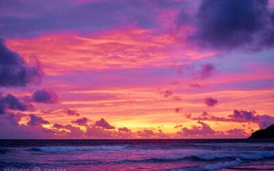 Our Being, I AM Meditation …& Self: Spira & Papaji