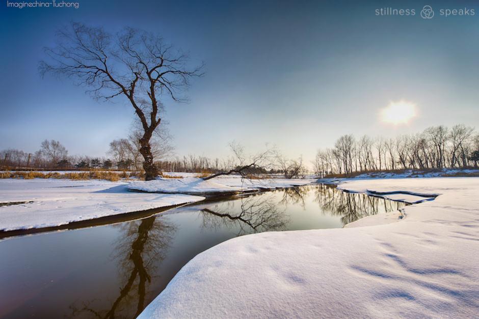 stillness winter landscape taylor