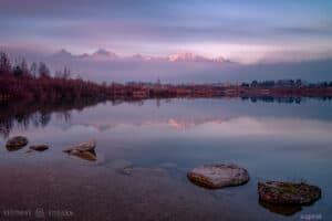 stillness peace taylor