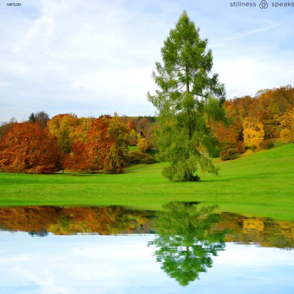 autumn landscape taylor
